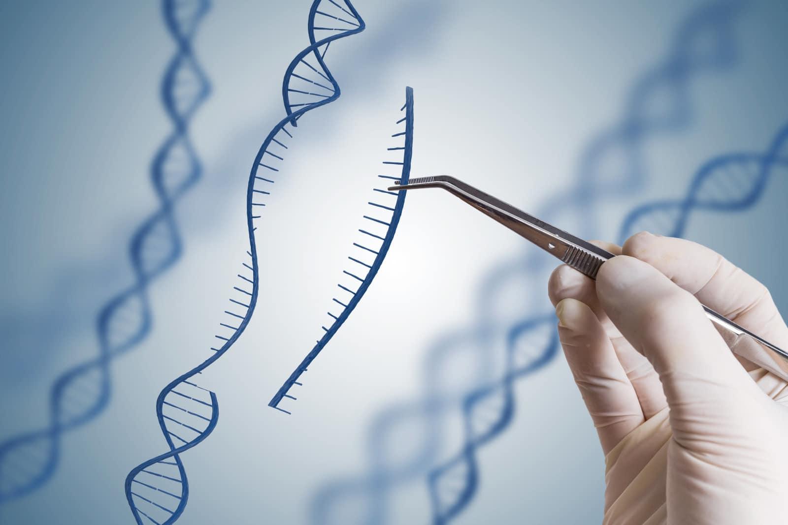 manipulacija gena